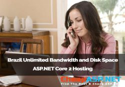 Brazil Unlimited Bandwidth and Disk Space ASP.NET Core 2 Hosting