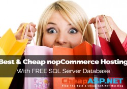 Best and Cheap NopCommerce Hosting with FREE SQL Server Database