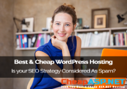 SEO Tips from CheapHostingASP.NET