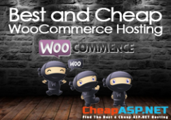 Best and Cheap WooCommerce Hosting
