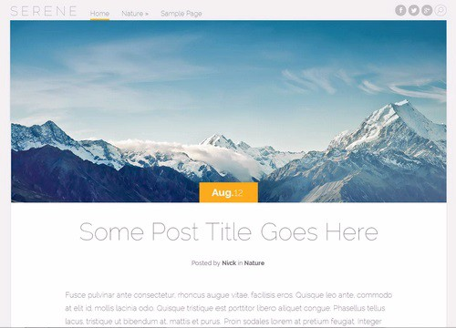 serene-wordpress-theme-500x360